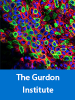 The Gurdon Institute